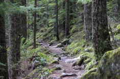 Hiking trails in the Cascades